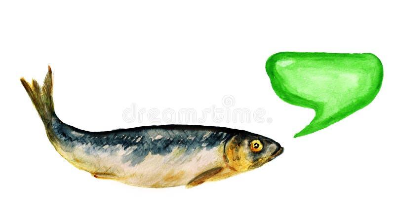 harengs Épice-salés illustration de vecteur