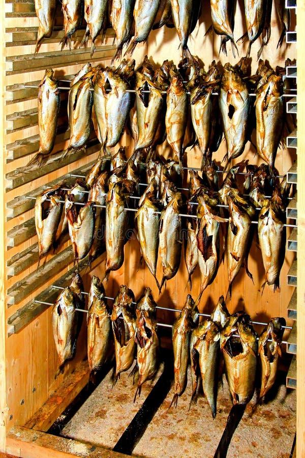 Harengs fumés photos stock