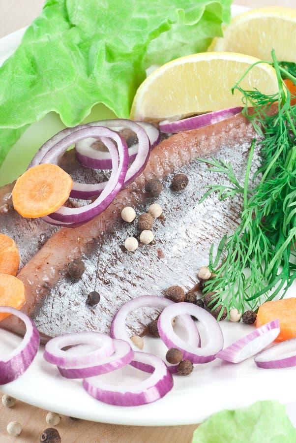 Harengs marinés photo stock