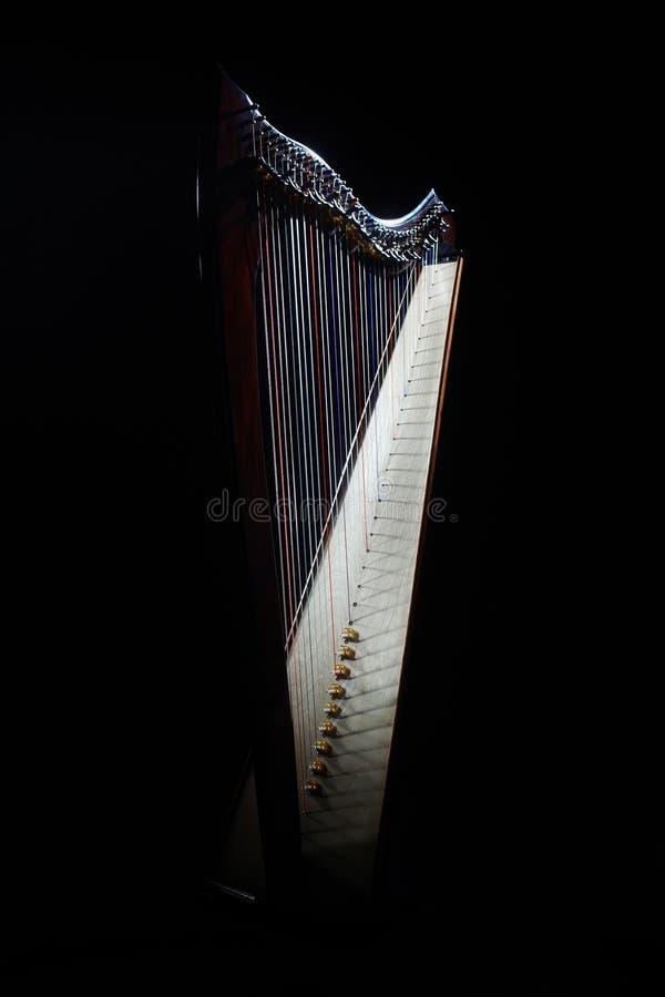 harfa zdjęcie stock