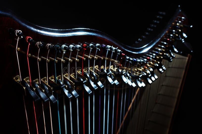 harfa zdjęcia royalty free