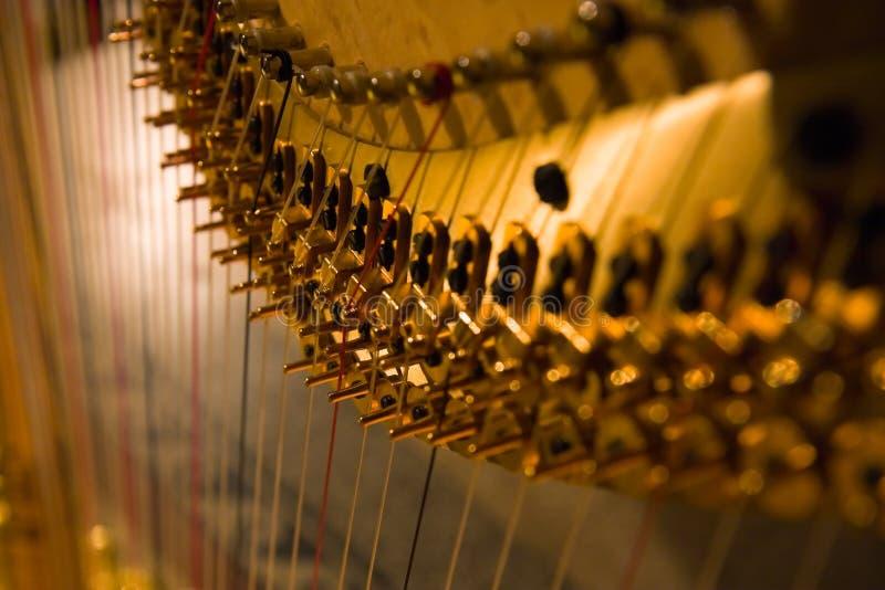 Harfa szczegół zdjęcia royalty free