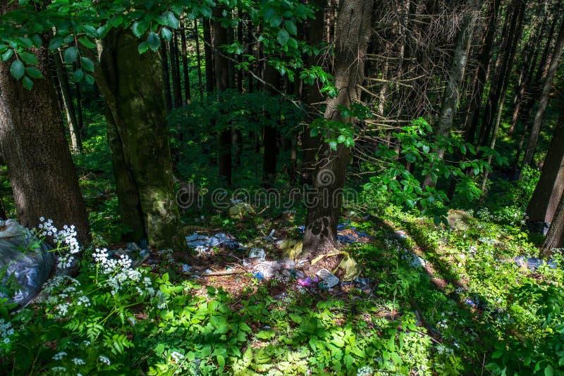 Human trash in the forest near roadside, conceptual human negligence image. Harghita Bai, Romania- 09 June 2019: Human trash in the forest near roadside royalty free stock image