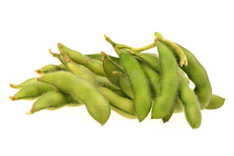 Haricot d'Edamame, soja dans la cosse bouillie ou cuite et servie à la vapeur avec du sel photographie stock