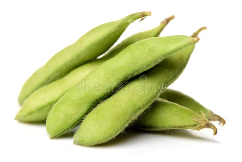 Haricot d'Edamame, soja dans la cosse bouillie ou cuite et servie à la vapeur avec du sel image libre de droits