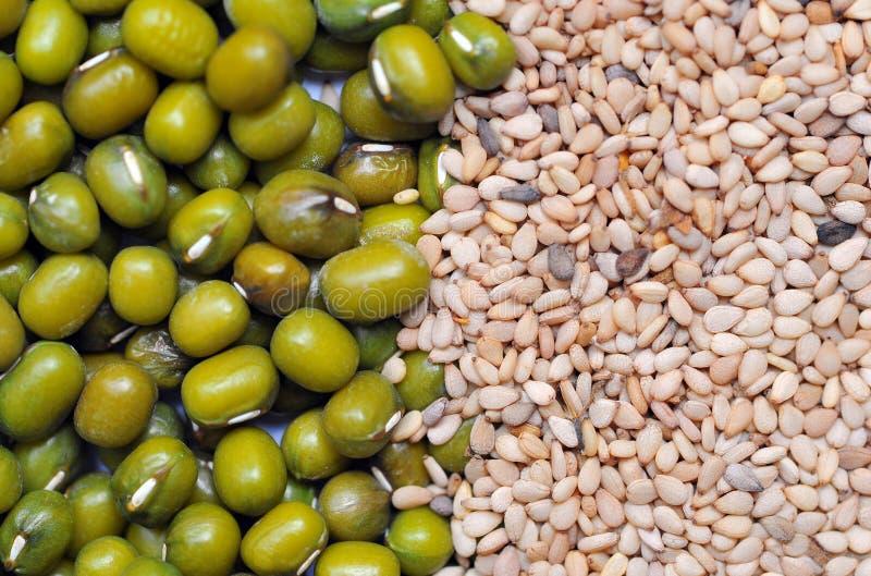 Haricot vert et fond blanc de graine de sésame. photographie stock