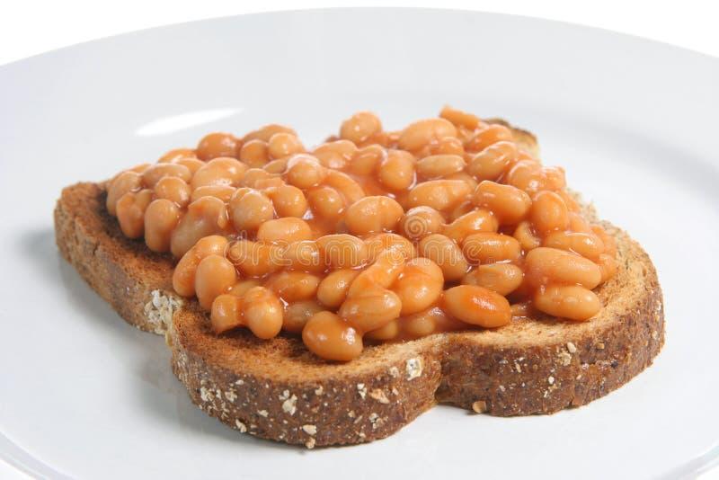 Haricots cuits au four sur le pain grillé image stock