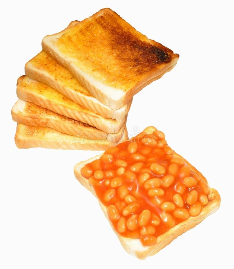 Haricots cuits au four sur le pain grillé image libre de droits