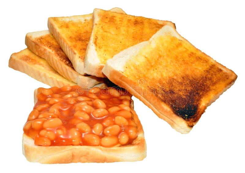 Haricots cuits au four sur le pain grillé photo stock