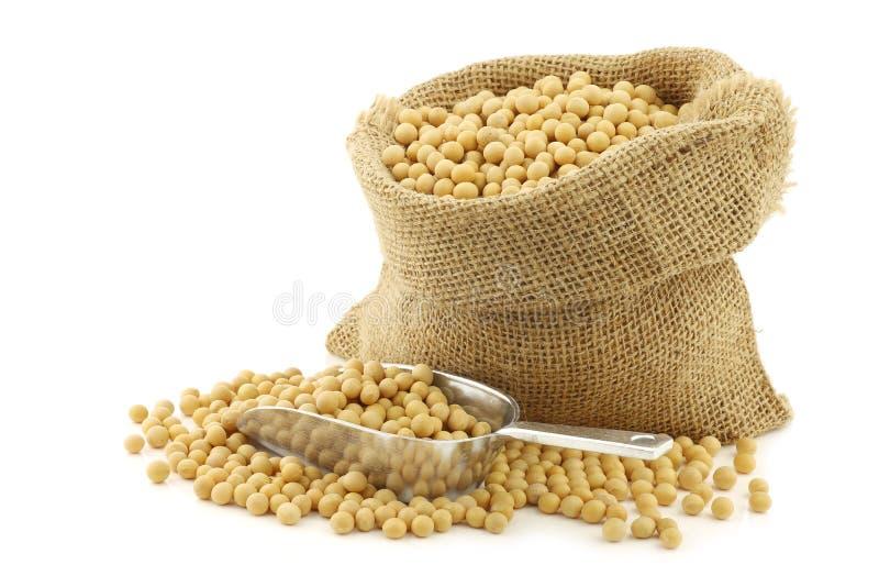 Haricots de soja dans un sac de toile de jute images stock
