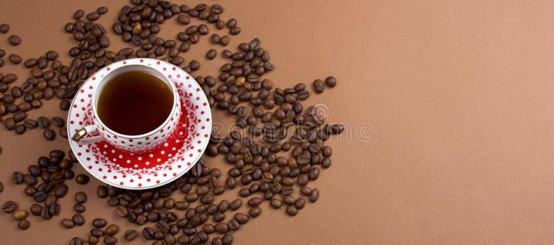 Haricots de tasse et de coffe de café de point de polka photographie stock libre de droits