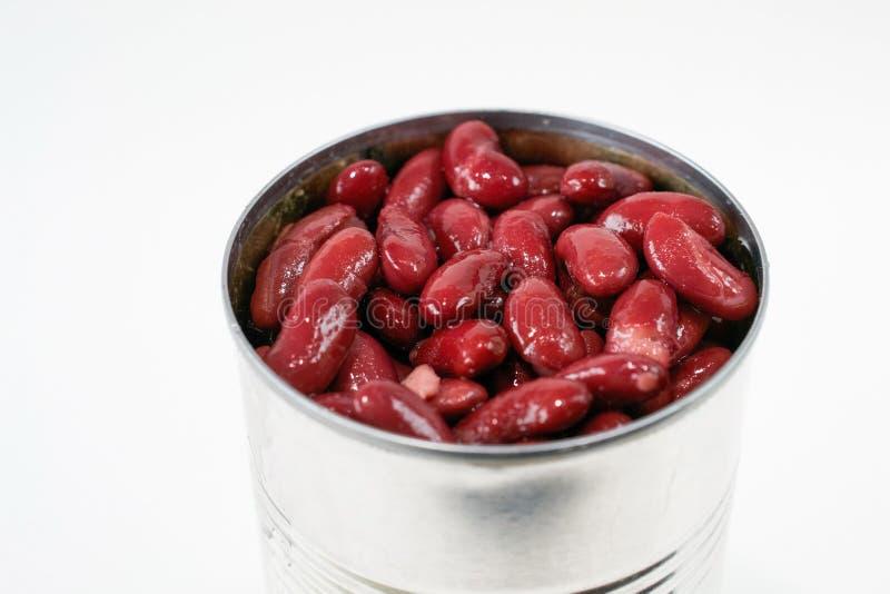Haricots nains rouges en boîte photographie stock