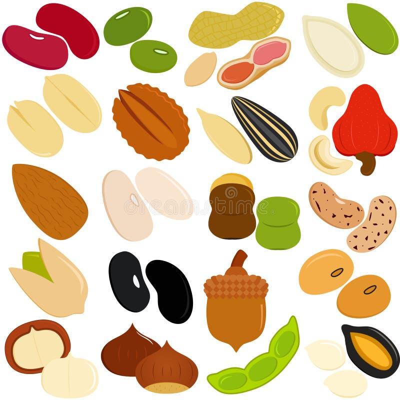 Haricots, noix, graines illustration libre de droits