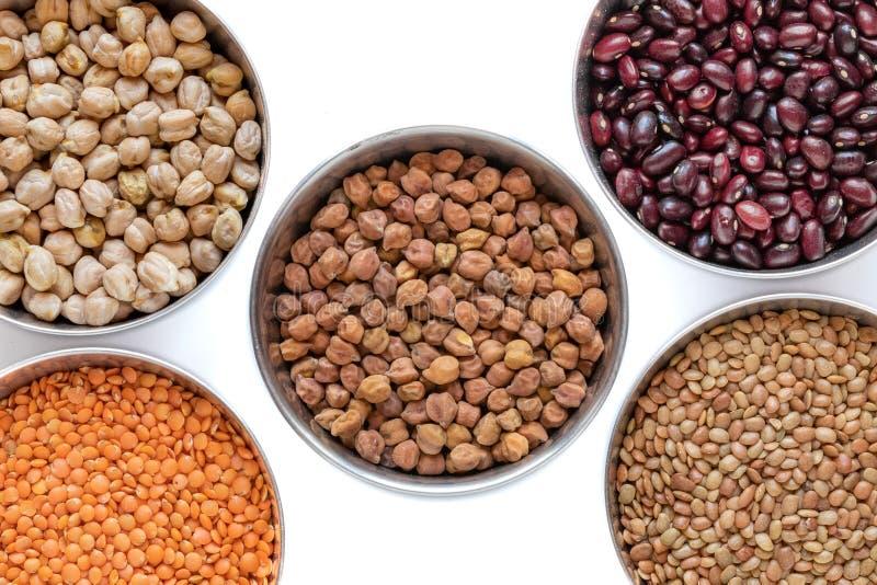 Haricots OU grains OU lentilles image libre de droits