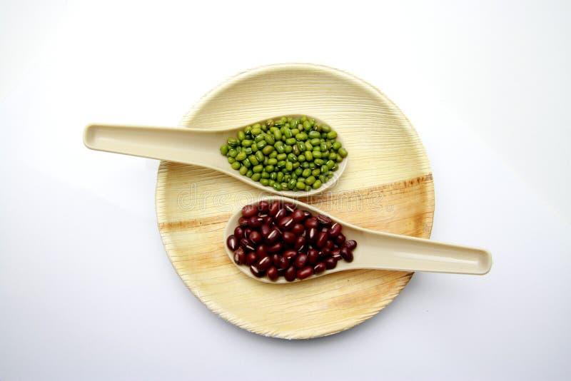 Haricots rouges et haricots verts dans une cuillère photographie stock libre de droits