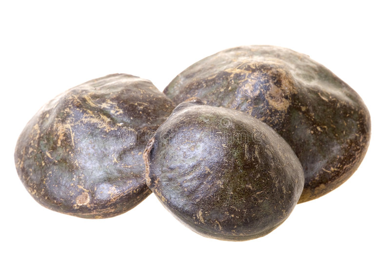 haricots sumatra d'isolement exotique photo stock