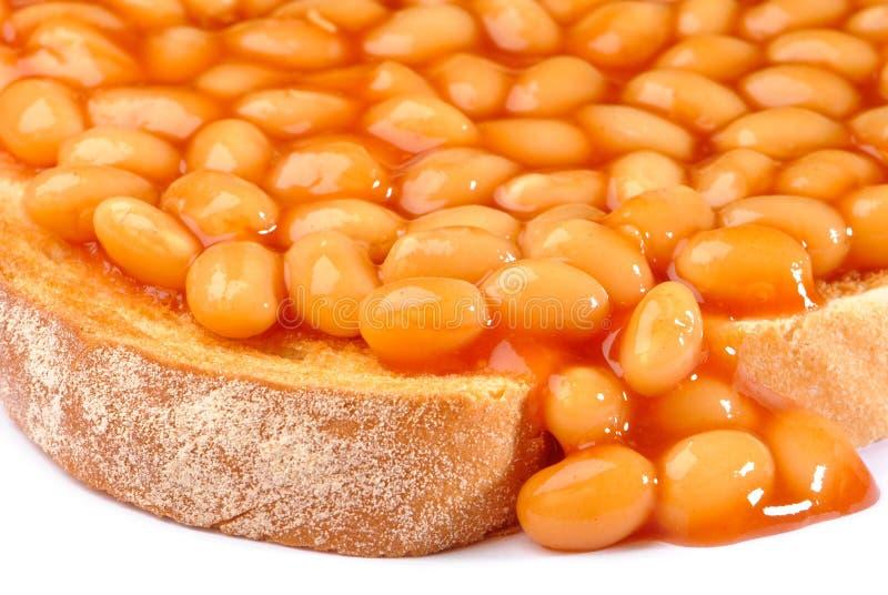 Haricots sur la fin de pain grillé vers le haut photo libre de droits