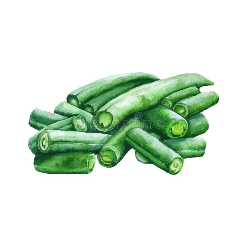 Download Haricots Sur Un Fond Blanc Illustration D'aquarelle Illustration Stock - Illustration du illustration, agricole: 77162029