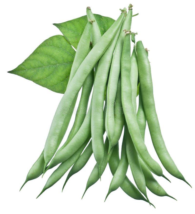Haricots verts frais d'isolement sur un blanc photo stock