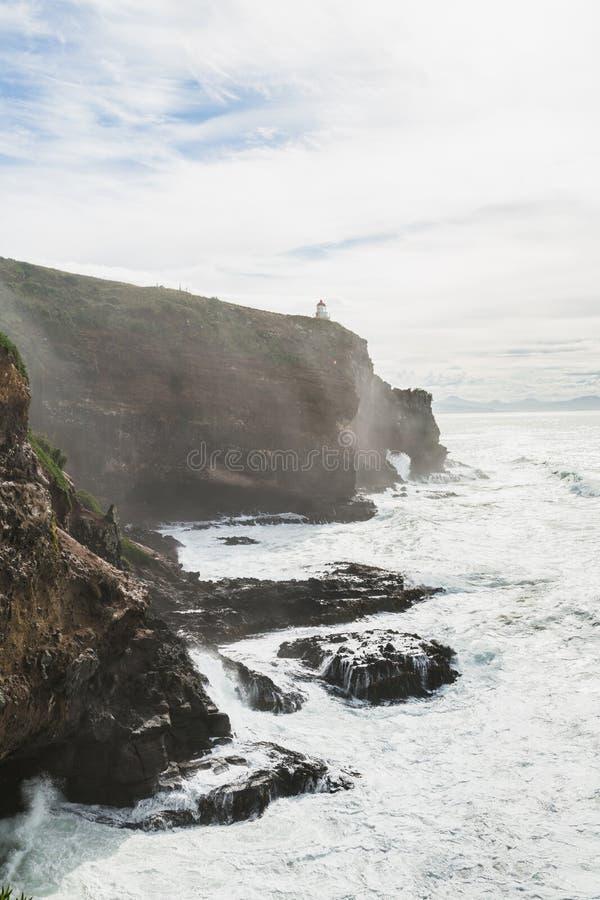 Harigton punkt, Nabrzeżny widok, wybrzeże pacyfiku Nowa Zelandia, Otago półwysep fotografia stock