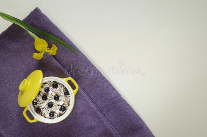 Harina de avena sana puesta plano del desayuno, muesli con los arándanos frescos y pasas foto de archivo libre de regalías