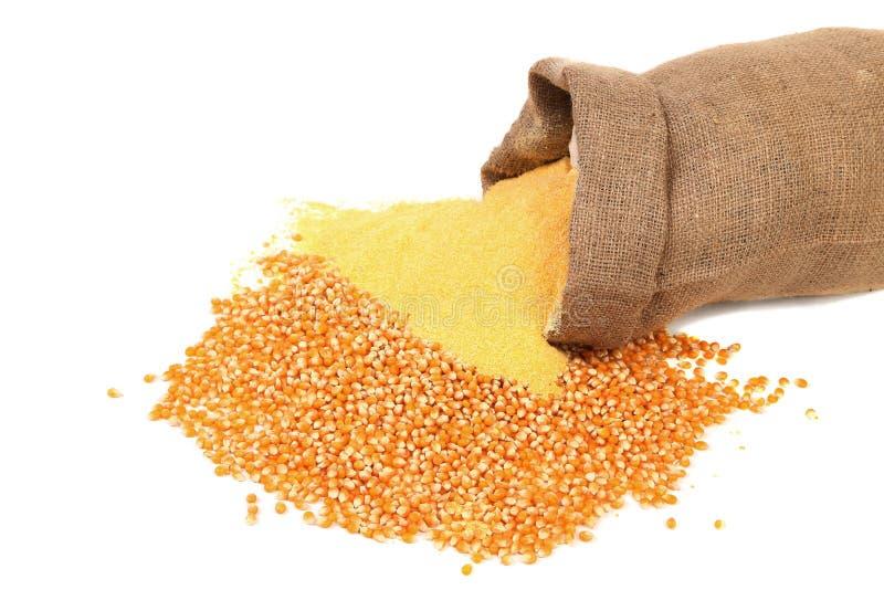 Harina y grano de maíz en bolso foto de archivo libre de regalías
