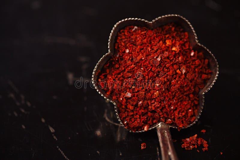 Harissa香料混合- morrocan炽热chilles混合了 库存图片
