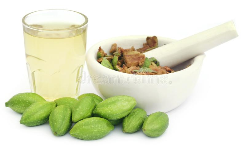 Haritaki médicinal vert frais avec l'extrait images stock