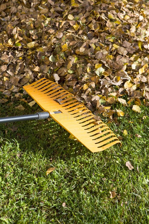 Harken von Blättern im Herbst stockbild