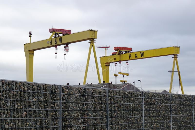 Harland y grúas del astillero de Wolff foto de archivo