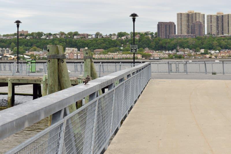 Harlem ad ovest Piers Park New York City, Stati Uniti immagini stock libere da diritti