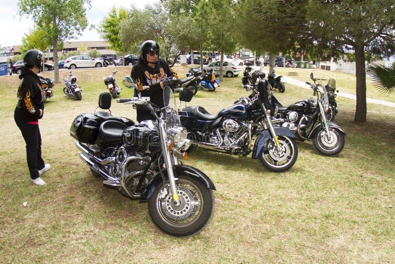 Harley-Davidson-автомобилистки стоковые фотографии rf