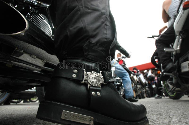 Harley Davidson stockfotos