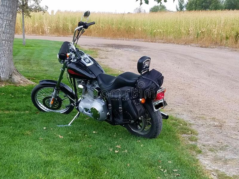Harley Davidson lizenzfreies stockfoto