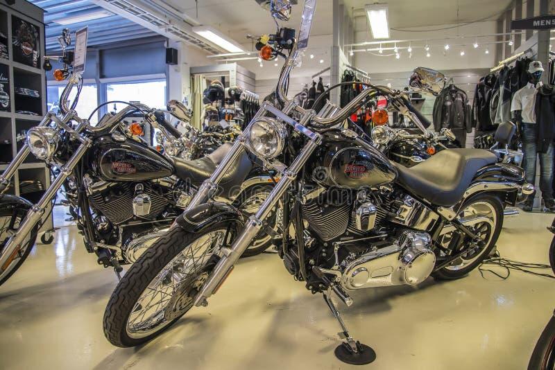 2007 Harley-Davidson, abitudine di Softail fotografia stock