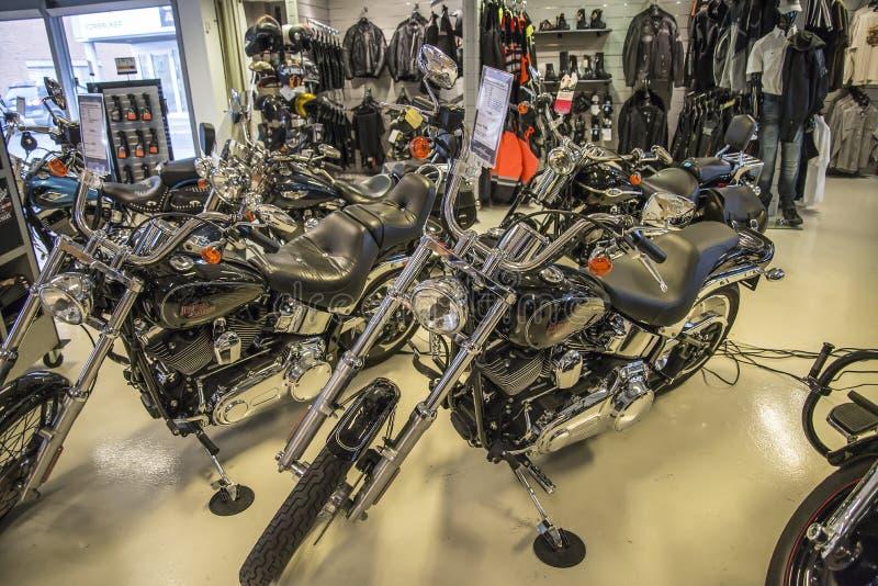 2007 Harley-Davidson, abitudine di Softail fotografia stock libera da diritti