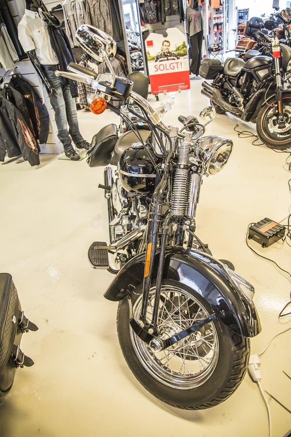 2009 Harley-Davidson, abitudine di Softail fotografie stock libere da diritti