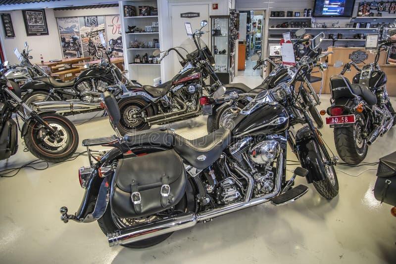 2009 Harley-Davidson, abitudine di Softail fotografia stock libera da diritti