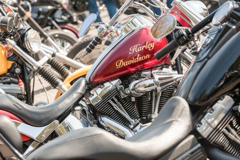 Harley Davidson royalty free stock photo