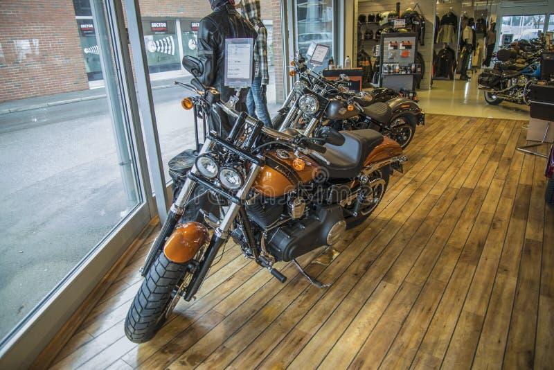 2014 Harley-Davidson, Dyna Fat Bob imagens de stock