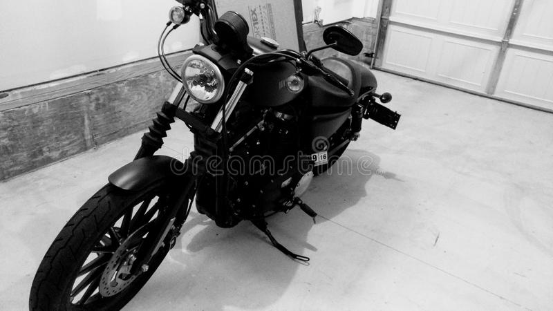 Harley Davidson motorcykel royaltyfri bild
