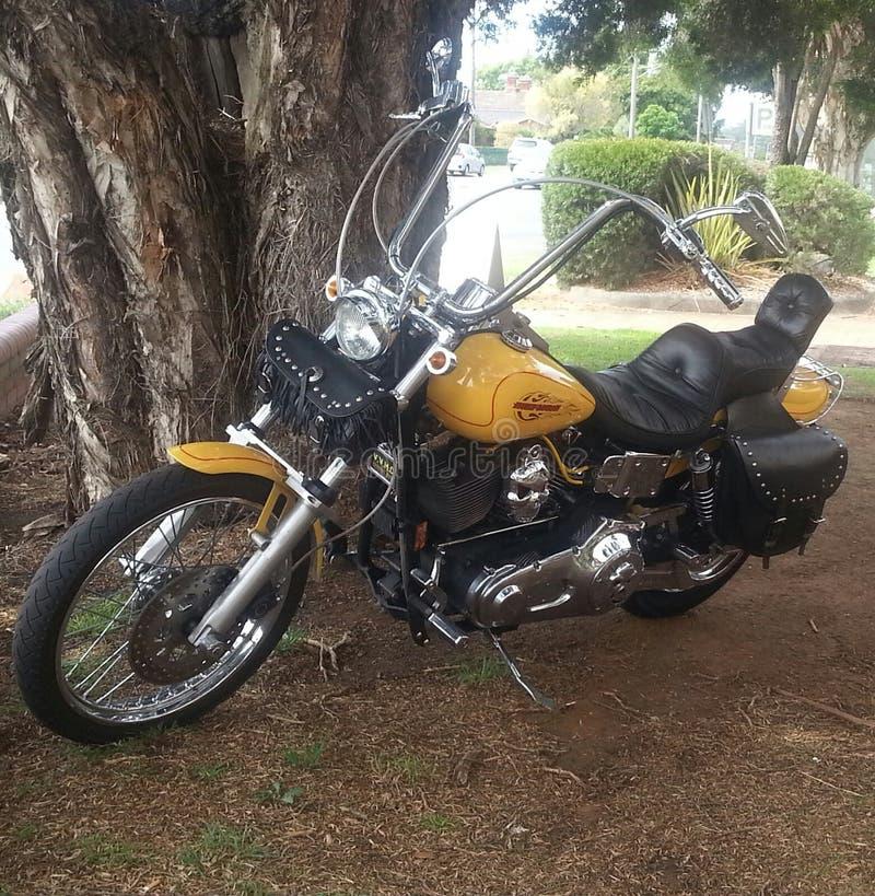 Harley Heaven royalty-vrije stock afbeeldingen