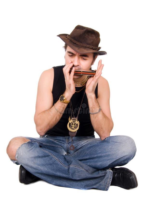 harmonica arkivfoto