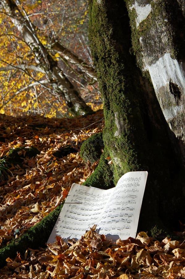 Harmonie d'automne, rythme de nature image libre de droits