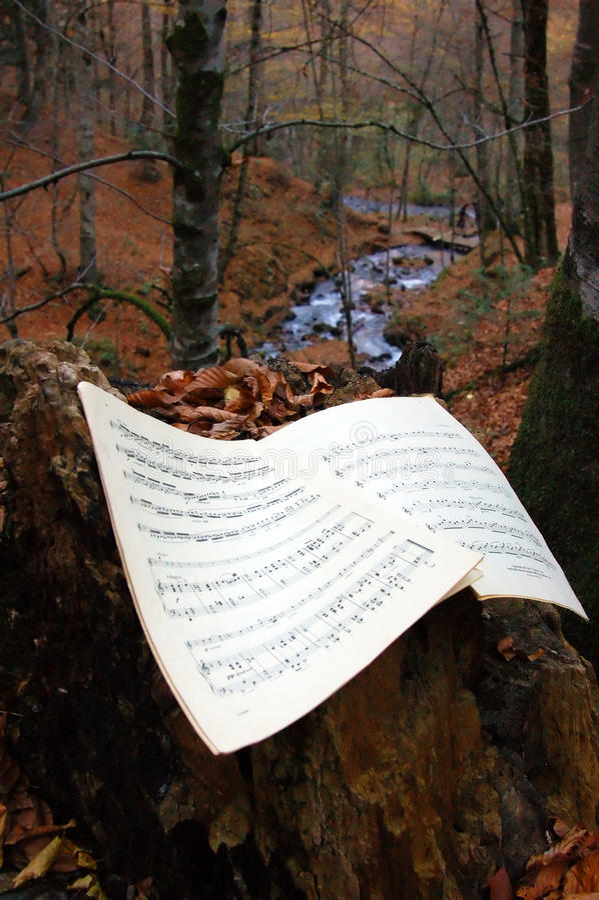 Harmonie d'automne, rythme de nature images stock
