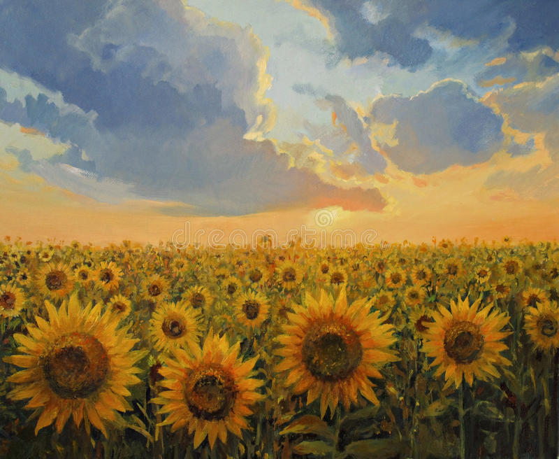 harmonii słońce fotografia royalty free