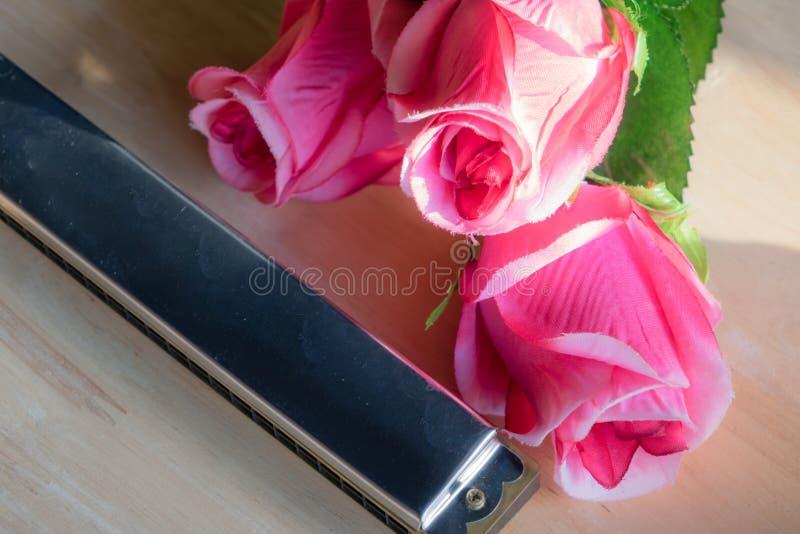 Harmonika mit einer Rosenblume lizenzfreies stockbild