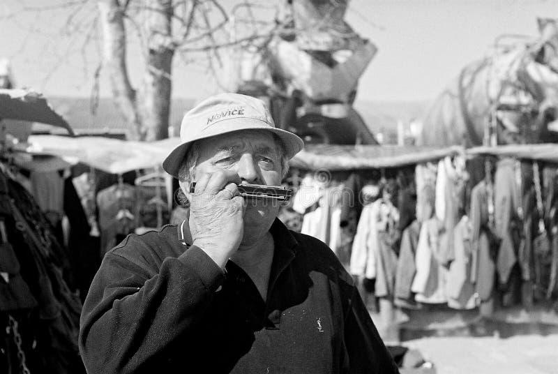 Harmonikaspeler royalty-vrije stock fotografie