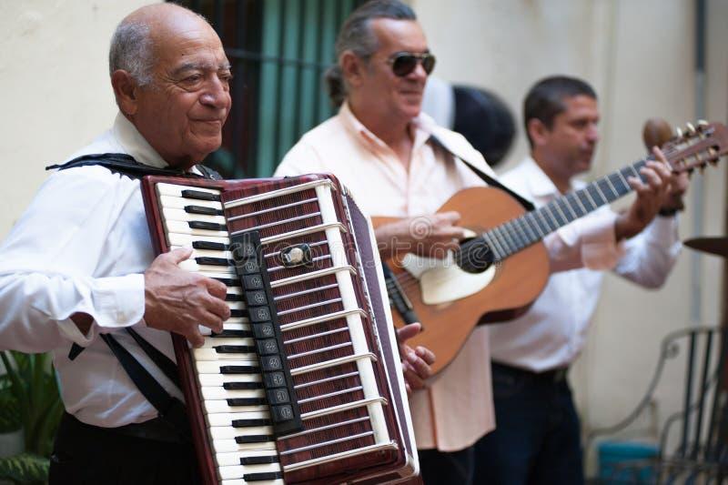 Harmonikaspeler in Havana Cuba royalty-vrije stock fotografie