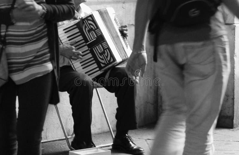 Harmonikaspeler stock afbeelding